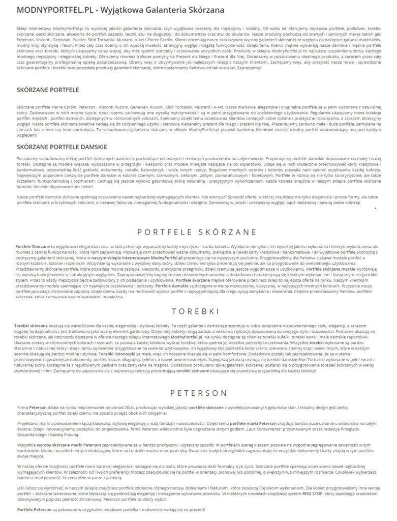 teksty na stronę główną, kategorii i podkategorii Copywriter Szymon Owedyk